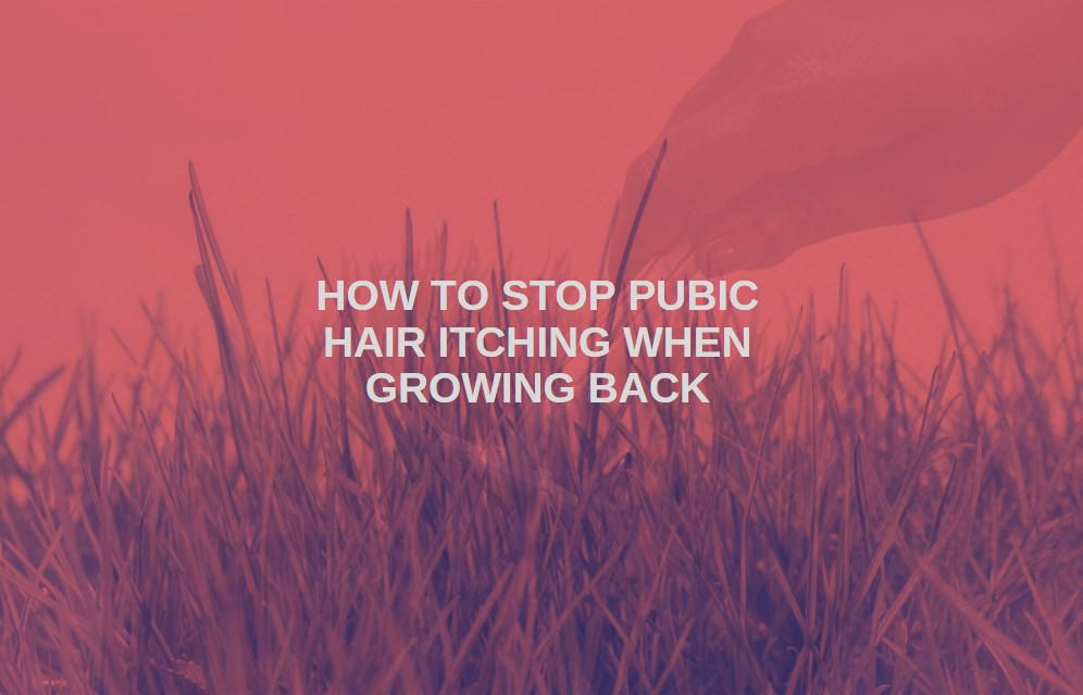 how to stop pubic hair itching when growing back